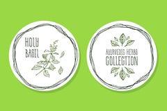 Herbe d'Ayurvedic - label de produit avec Basil saint Photos stock