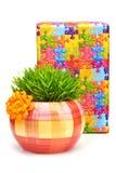 Herbe dans le pot de fleurs d'isolement sur le blanc Photographie stock libre de droits