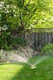 Herbe de arrosage d'arroseuse de pelouse photo stock