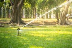 Herbe de arrosage d'arroseuse de pelouse dans le jardin sous la lumière du soleil photographie stock