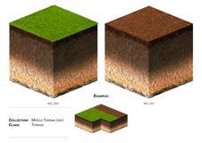 herbe de bloc du paysage 3D Image stock