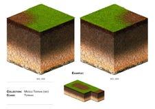herbe de bloc du paysage 3D Images libres de droits