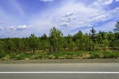 Herbe de bord de la route et ciel bleu Photos libres de droits