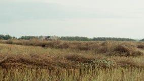 Herbe de champ dans le cartel de fond Moisson banque de vidéos