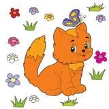 Herbe de chat Photographie stock libre de droits