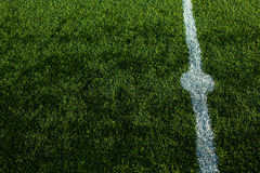 Herbe de coupe de puits d'un terrain de football Photo stock