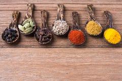 Herbe de curry et de graine Photographie stock