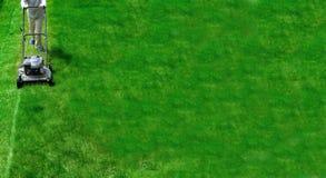 Herbe de fauchage de pelouse Photographie stock libre de droits