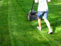 Herbe de fauchage de pelouse Image libre de droits