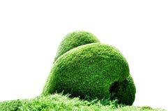 herbe de forme d'amour de décoration Photo libre de droits