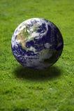herbe de gisement de la terre plus de Photographie stock libre de droits