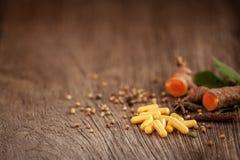 Herbe de médecine, capsule de fines herbes avec la plante médicinale saine Images stock