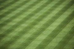 Herbe de stade de base-ball photographie stock libre de droits