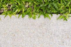 Herbe de texture et de bande de gravier comme fond Photo stock