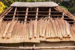 Herbe de toit couvrant la construction de chaume Photos stock