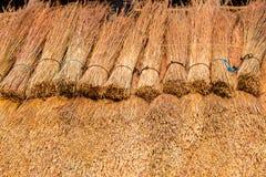 Herbe de toit couvrant la construction de chaume Images libres de droits