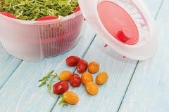 Herbe de verts micro en dessiccateur et tomates-cerises blancs photo stock