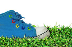 Herbe des chaussures de l'enfant, fond blanc Photo stock