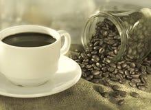 Herbe deux de café Images libres de droits