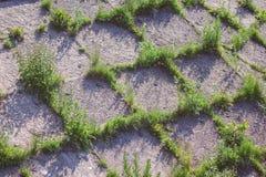Herbe et brique moulues Photographie stock libre de droits
