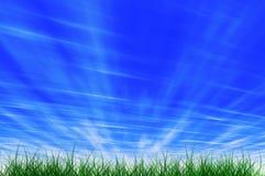 Herbe et ciel Photo libre de droits