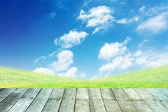 Herbe et ciel bleu avec le pavage en bois Image stock