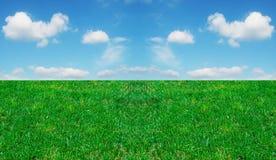 Herbe et ciel nuageux images libres de droits