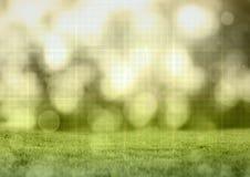 Herbe et feuilles de scintillement avec la grille de technologie Images libres de droits