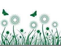 Herbe et fleurs photo stock