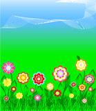 Herbe et fleurs colorées au-dessus de ciel bleu Image stock