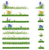 Herbe et fleurs réglées Image stock