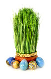 Herbe et oeufs de Pâques Image stock