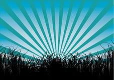 Herbe et rayons bleus illustration stock
