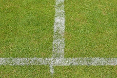 Herbe et rayures du terrain de football Photographie stock
