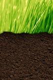 Herbe et sol illustration de vecteur