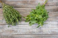 Herbe fraîche en gros plan savoureuse et de Basil sur la table en bois rustique Images stock
