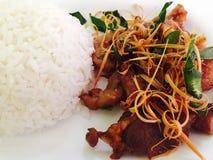 Herbe frite de porc avec du riz Photographie stock libre de droits
