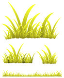 Herbe jaune Photographie stock