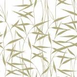 Herbe Modèle sans couture avec l'herbe verte sur un fond blanc pour la conception Images stock