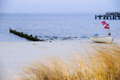 Herbe par la plage Images libres de droits