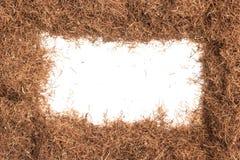 Herbe sèche de soie de maïs Cadre de Maydis de stigmates Image stock