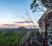 Herbe s'élevant hors de la roche sur une montagne Image libre de droits