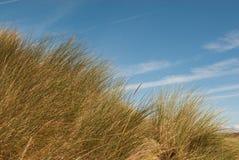 Herbe sur des dunes de sable contre le ciel Photos libres de droits