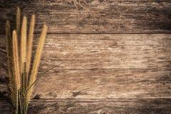Herbe sur le ton en bois de couleur de vintage de fond Image stock
