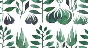 Herbe vert clair et aquarelle sans couture de modèle de feuilles Images libres de droits