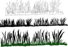 Herbe vert-foncé verte Image libre de droits