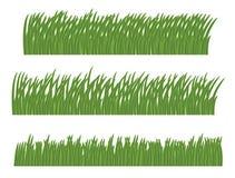 Herbe verte Photo libre de droits
