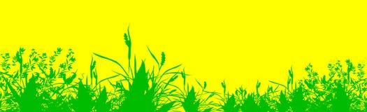 Herbe verte abstraite Images libres de droits