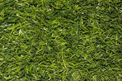 Herbe verte artificielle Photo stock