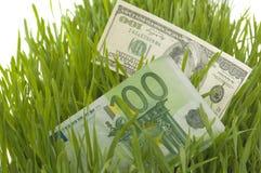 Herbe verte avec le dollar et l'euro Images stock